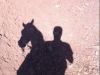 danny-shadow-on-horse_sept-30_petra