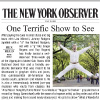 New York Observer